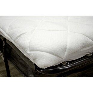 Superb Twin Sofa Bed Mattress Pad Wayfair Ca Download Free Architecture Designs Scobabritishbridgeorg