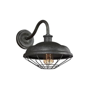 Januario 1-Light Outdoor Barn Light