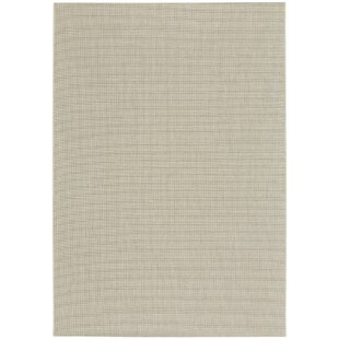 Ridge Grain Indoor/Outdoor Area Rug