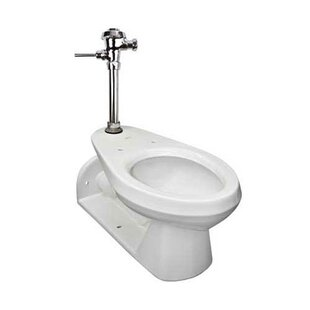 Mansfield Plumbing Products Commercial Dual Flush Elongated One-Piece toilet