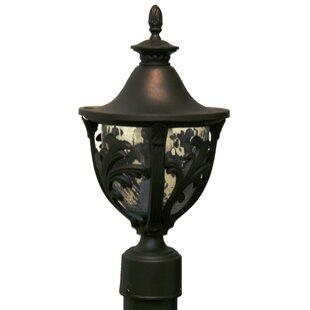 Phillipstown 1 Light Post Lantern by Alcott Hill