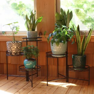 Outdoor Plant Stands You'll | Wayfair on