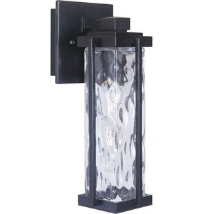 Gracie Oaks Grazyna 1-Light Outdoor Wall Lantern