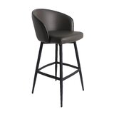 Demaria Bar & Counter Swivel Stool by Brayden Studio®