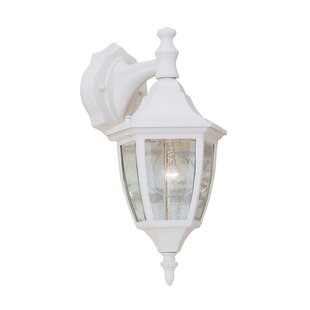 Slusser Traditional 1-Light Outdoor Wall Lantern