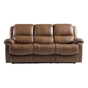 Schechter Reclining Sofa by Re..