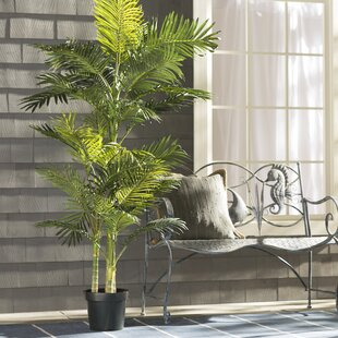 faux plants & trees | joss & main Artificial House Plants and Trees