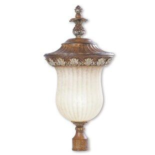Astoria Grand Scotland Outdoor 1-Light Lantern Head