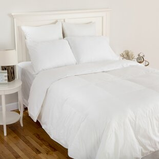 Island Breeze Down Comforter