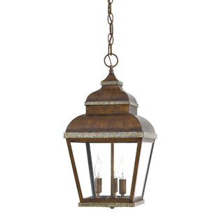 Saniyah 3-Light Outdoor Hanging Lantern