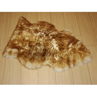 Best Deals Pet Eclipse Rug By Bowron Sheepskin Rugs
