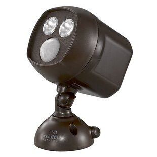 Acclaim Lighting 2-Light LED Spot Light