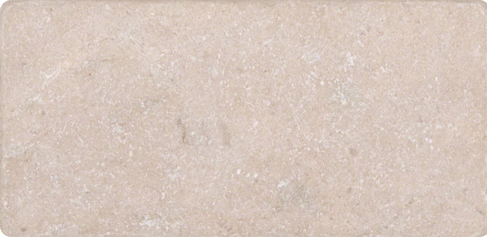 Msi 3 x 6 marble tile in polished cream and beige reviews 3 x 6 marble tile in polished cream dailygadgetfo Images