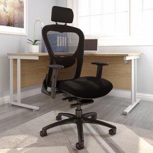 Skegness Ergonomic Mesh Desk Chair By Ebern Designs