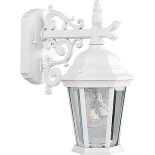 Top Reviews Triplehorn 1-Light Outdoor Clear Wall Lantern By Alcott Hill