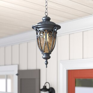 Grandstaff 1-Light Outdoor Hanging Lantern