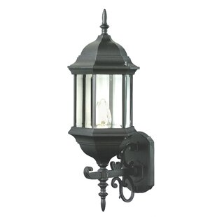 Affordable Savanna 1-Light Outdoor Sconce By Alcott Hill
