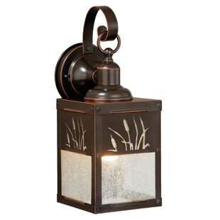 Find Perris 1-Light Outdoor Wall Lantern By Loon Peak