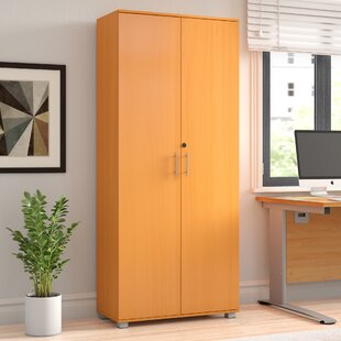 2 Door Storage Cabinet By Symple Stuff