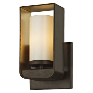 Robby 1-Light LED Bath Sconce by Ivy Bronx