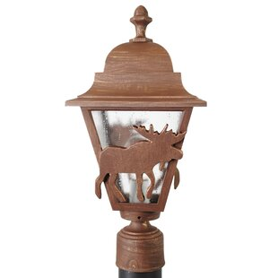 Online Reviews Penfield Moose Series 1-Light Lantern Head By Alcott Hill