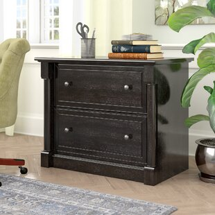 Three Posts Henley 2 Drawer Lateral File