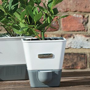 Indoor Herb Garden Self Watering Carbon Steel Pot Planter