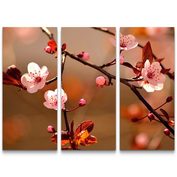 CHERRY BLOSSOMS Golden Temple Japan Canvas Wall Art~ More Size