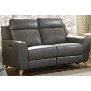 Orren Ellis Guillermo Reclining Loveseat