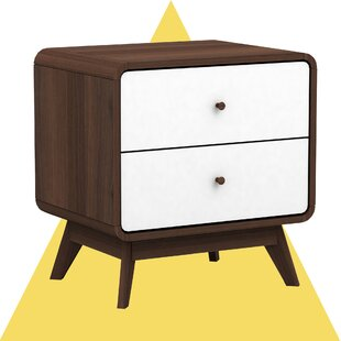 Christian 2 Drawer Nightstand by Hashtag Home