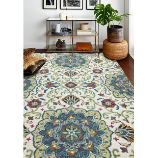 Traditional Area Rugs Birch Lane