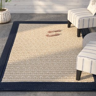 Dartmouth Hand-Woven Navy Indoor/Outdoor Area Rug