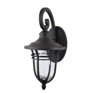 Charlton Home Ferrante 1-Light Outdoor Wall Lantern
