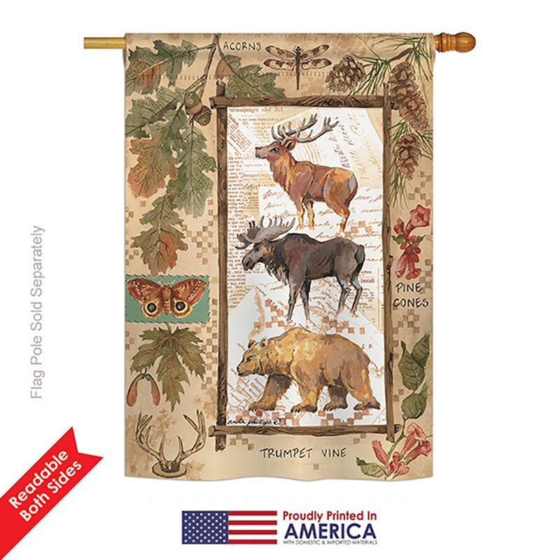 Breeze Decor Woodland Adventures Nature And Everyday Wildlife Impressions 2 Sided Polyester 40 X 28 In House Flag Wayfair