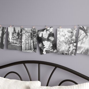 Liverpool Photo Display 9 ft. 30-Light Novelty String Light by Greyleigh