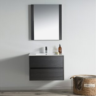 Oquendo 30 Single Bathroom Vanity Set with Mirror