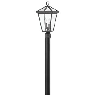 Alford Place Outdoor 2-Light Lamp Post by Hinkley Lighting