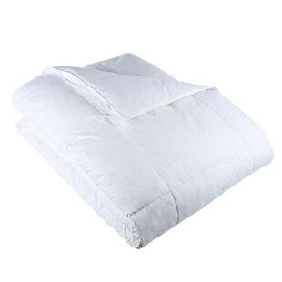 Galla All Season Down Alternative Comforter