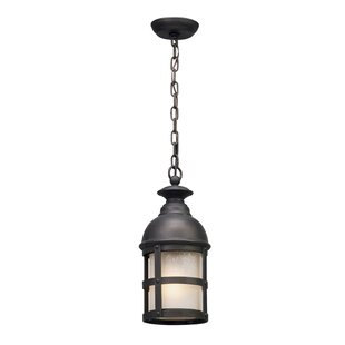 Marli 1-Light LED Outdoor Pendant