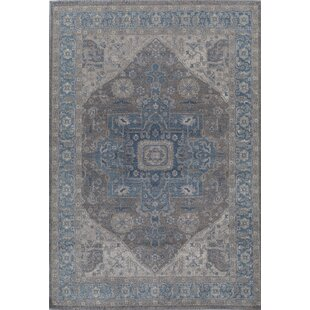 Estelle Sway Blue/Gray Area Rug by Rugs America