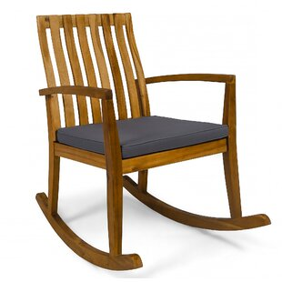 Matheny Rocking Chair with Cushions (Set of 2) by Millwood Pines