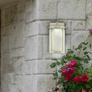 Ybanez Contemporary LED Outdoor Wall Lantern by Brayden Studio