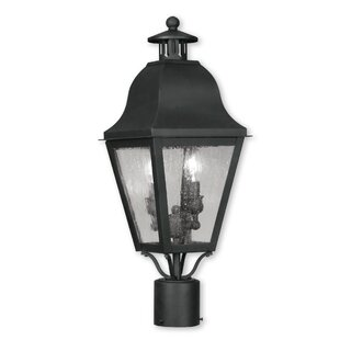 Darby Home Co Natalie Outdoor 2-Light Lantern Head