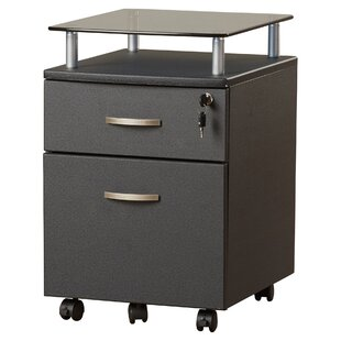 Onway 2 Drawer Mobile File Cabinet  sc 1 st  AllModern : colorful filing cabinets - Cheerinfomania.Com