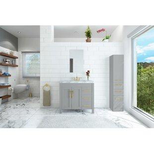 Big Save Crater 40 Single Bathroom Vanity Set ByOrren Ellis