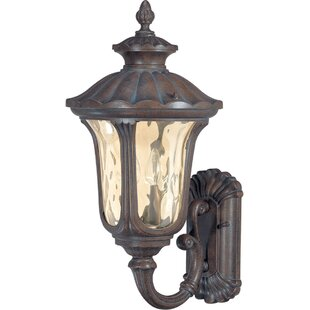 Read Reviews Pinney 2-Light Outdoor Sconce By Astoria Grand