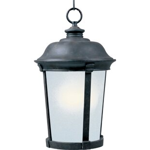 Darby Home Co Nesbitt 1-Light Outdoor Pendant