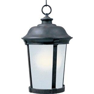 Darby Home Co Nesbitt 1-Light Outdoor Pendant