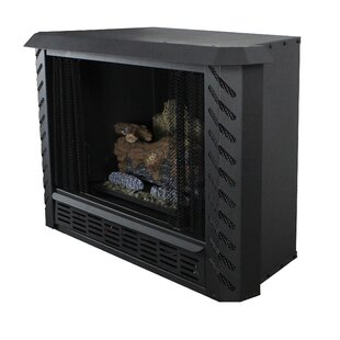 Vent Free Natural Gas Fireplace Insert by Ashley Hearth