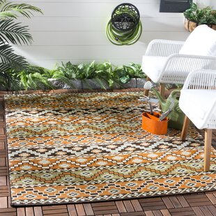 Zahr Orange/Brown Indoor/Outdoor Area Rug